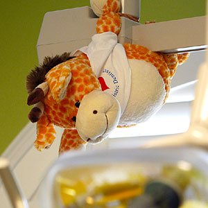 Cute giraffe plush toy to make children less anxious during their pediatric dentistry visit in Campbell, CA.